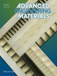 "Anisotropic materials developed by Asst. Prof. Stephan Rudykh, on the front cover of the scientific journal, ""Advanced Engineering Materials"" November 2014 edition, Volume 16, Issue 11, courtesy of WILEY-VCH Verlag GmbH & Co. KGaA"