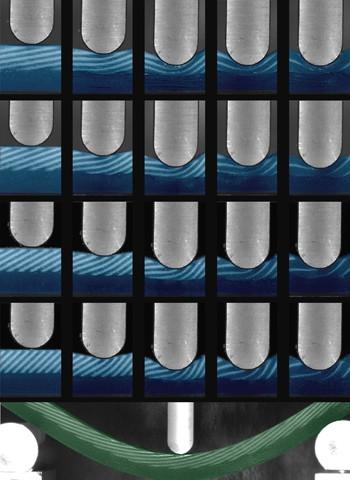 המיקרו-מבנים השונים (זוויות שונות של קשקשים קשים וכמות החומר הקשיח) ותגובתם לחוזק החדירה; בתחתית – כיפוף-בלחץ של אחד הדגמים, במטרה להעריך את גמישות החומר.
