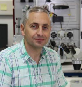 Assistant Prof. Akram Alian