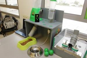 המערכת נשלטת הסמארטפון המטפלת בכלב בהעדרו של הבעלים