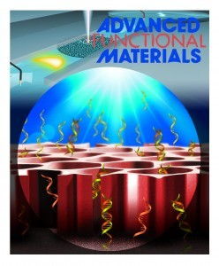 The back cover of Advanced Functional Materials. Illustration: Dima Abelsky