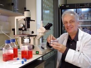 Dr. Vlodavsky