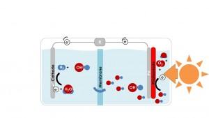 בתרשים הראשון מודגם התקן פוטו-אלקטרוכימי קונבנציונלי, שבו מפרידה ממברנה בין שני התוצרים (חמצן מימין, מימן משמאל).