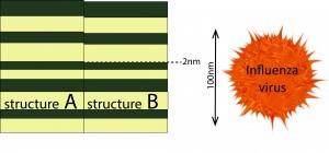 Comparison - השוואת סדרי גודל: ההפרש בין שני המבנים שנמדדו בניסוי קטן מאוד – רק 2 ננומטרים – לעומת גודלו של וירוס השפעת המוצג מימין (כ-100 ננומטר).