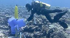 איסוף דגימות מי ים