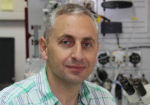 Assistant Professor Akram Alian