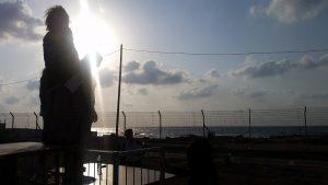 מעבר לגדר - ליאל מועלם