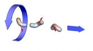 באיור: השדה המגנטי מסובב את השחיין המלאכותי האופטימלי וכך גורם לו לנוע קדימה (ימינה, באיור שלפנינו).