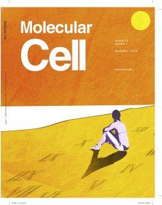 המחקר התפרסם ביום חמישי 25.10.18 בכתב העת Molecular Cell