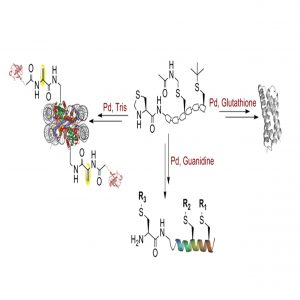 באיור: יצירת אשכולות חלבונים מורכבים באמצעות כוונון מדויק של תהליכים כימיים בעזרת קומפלקסים אורגנו-מתכתיים