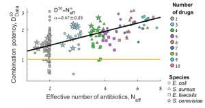 בתרשים: הכמות הכללית של אנטיביוטיקה הדרושה לעיכוב עולה כמו שורש מספר התרופות השונות בקוקטייל. כל נקודה בתרשים מייצגת שילוב של 2-10 אנטיביוטיקות שונות. אפשר לראות שכאשר מעלים את מספר האנטיביוטיקות השונות בשילוב הכמות הדרושה מכל אחת מהתרופות יורדת (שיפוע הגרף α קטן מאחד), בעוד הכמות הכללית עולה.
