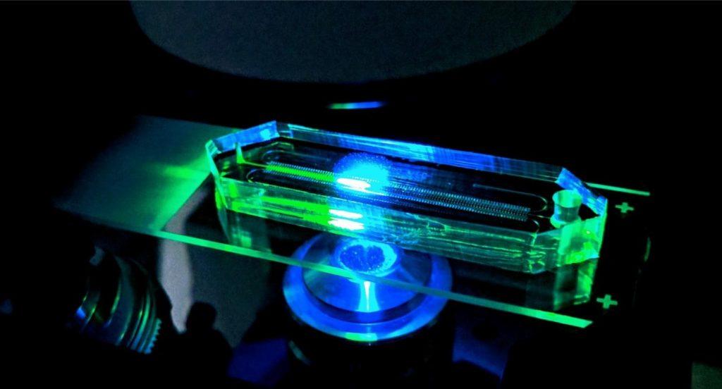 מכשיר לטעינה וסריקה (nanoliter array device) לאבחנה רפואית מהירה של עמידות בפני אנטיביוטיקה. באדיבות יונתן אבישר, מעבדת לבנברג
