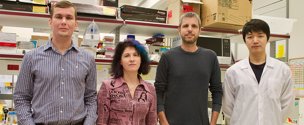פותחה טכנולוגיה חדשנית לניטור תהליכים מטבוליים ברקמה הסרטנית ברמה התת-תאית