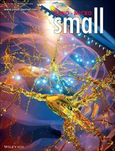 תמונת השער במגזין Small, המוקדשת למחקר. שבבי הסיליקון מוחדרים למוח העכבר בהשתלה בטוחה או באמצעות אקדח גנים. השבבים מתפרקים תוך כדי שחרור פקטור גדילה עצבי, חלבון המונע את מות תאי העצב במחלת אלצהיימר. איור: Ella Maru Studio