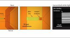 Pasted Graphics – 2 – התקן הננו-תעלות, המשמש למתיחת גדילי די-אן-איי ארוכים
