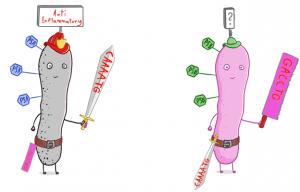 בתרשים: החיידק משנה את מערכת ההגנה שלו (הנשק), וכתוצאה מכך משתנים הסוכרים שסובבים אותו (המשושים על גב החיידק)
