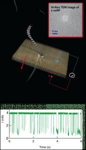 באיור: העברת הדגימה בחריר הנומטרי המיוצר בשכבת סיליקון ניטריד דקיקה – ואנליזה של הדגימה. הגרף התחתון מציג את מדידת הזרם החשמלי בחריר – כך נספרות מולקולות הנגיף.