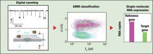 משמאל: מדידת הזרם בננו-חריר מאפשרת ספירה ישירה של מולקולות הנגיף (מסומנות בכוכביות אדומות) בהשוואה למולקולות די-אן-איי רגילות. באמצע: האותות החשמליים עוברים עיבוד ממוחשב בתוכנה המבוססת על למידת מכונה. מימין: השלבים הקודמים מפיקים כימות מדויק של הביטוי של גן הבקרה האנושי והגן הנגיפי. מתוך היחס ביניהם אפשר לכמת את חומרת ההידבקות בנגיף SARS-CoV 2