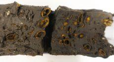 איור מס' 2: חתך של דוגמה שהוצאה מהאתר הארכיאולוגי בחישולי כרמל. צילום אהוד גלילי